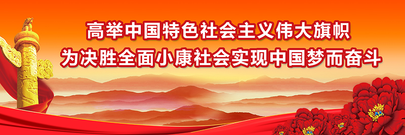 高举中国特色社会主义伟大旗帜 为决胜全面小康社会实现中国梦而奋斗